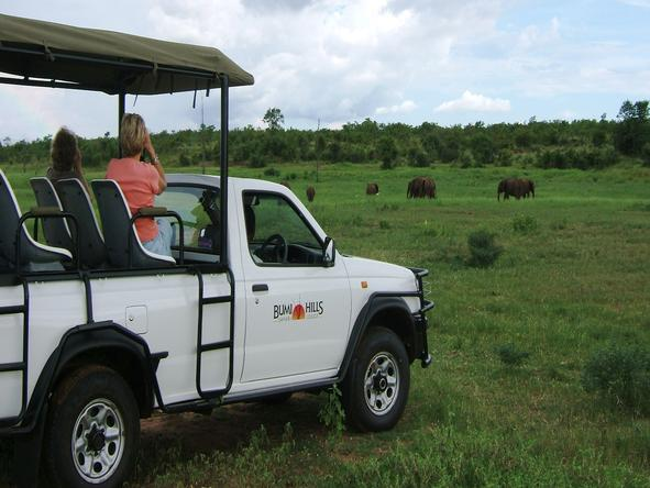 Bumi Hills Safari Lodge - Activities