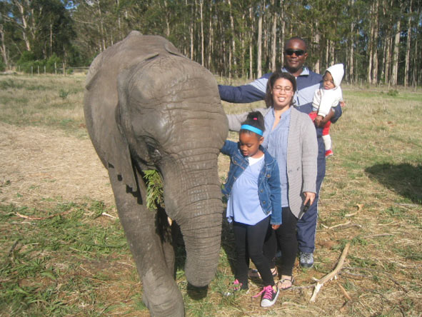 Candice Eseme - visiting Knysna Elephant Sanctuary
