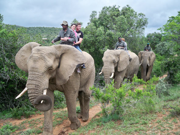 Candice McCarthy - riding an elephant just outside Addo in the Eastern Cape