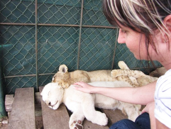 Christine Mischker - visiting lion cubs at a rehabilitation sanctuary