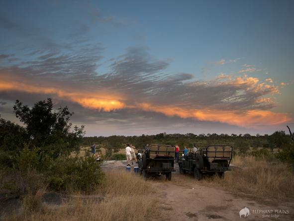 Elephant Plains Game Lodge - game drive sunset