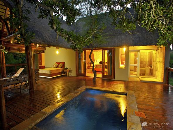 Elephant Plains Game Lodge - pool patio