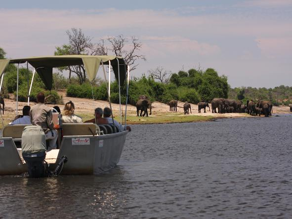 Elephant Valley Lodge - Activities