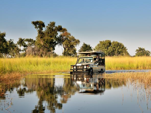 Footsteps Across the Delta - game drive