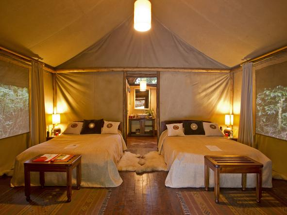 Gorilla Forest Camp -Accommodation