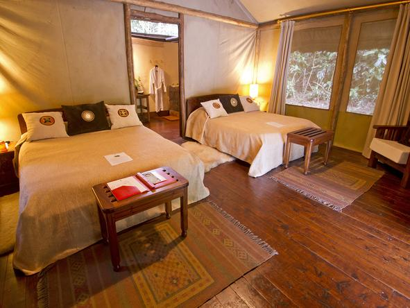 Gorilla Forest Camp - Bedroom2