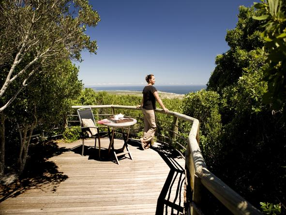 Grootbos Forest Lodge - Private Deck