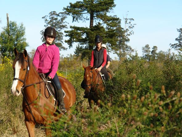 Hog Hollow Country Lodge - Horse Riding
