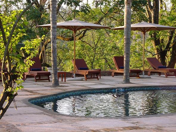 Jatinga Country Lodge - Pool