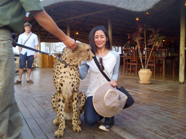Jehan Begg - getting close to Sylvester the cheetah!