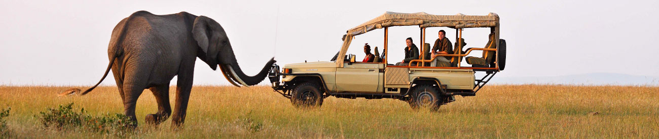 Kenya Safari Holiday
