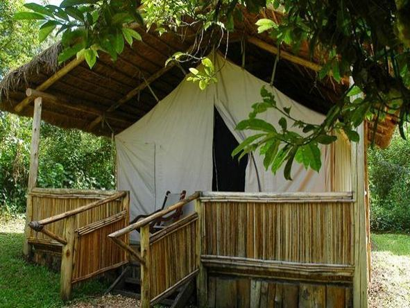 Kibale Forest Camp - suite exterior
