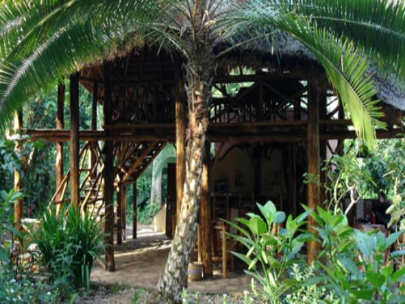 Kibale Forest Camp - exterior