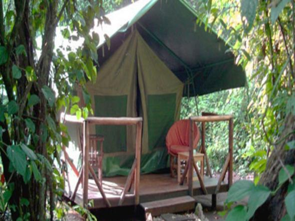 Kibale Forest Camp - tent exterior