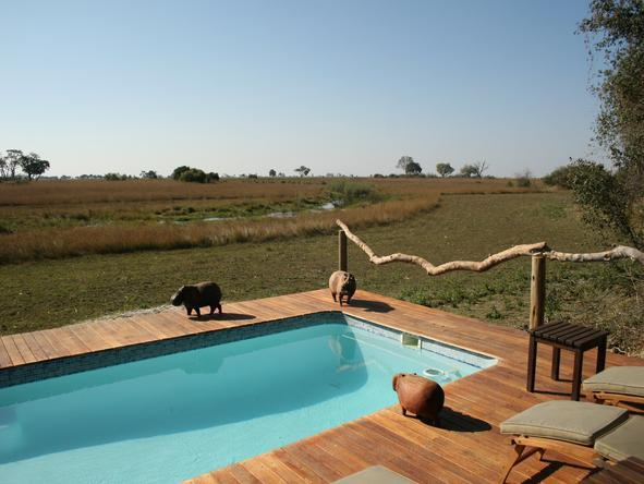 Kwando Lebala Camp- pool deck
