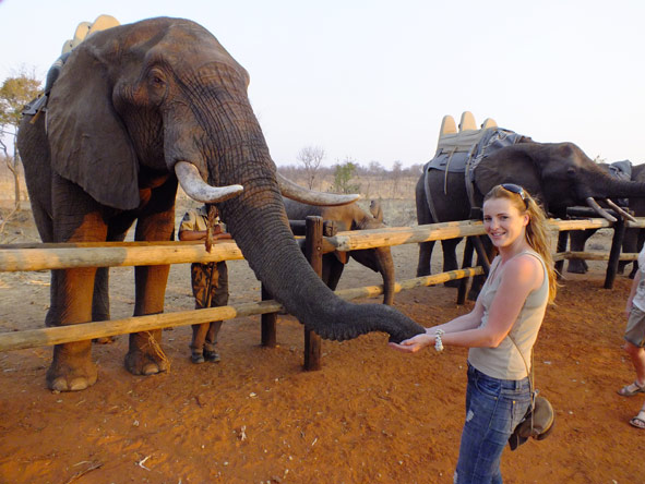 Leanne Rodney - feeding elephants at Victoria Falls