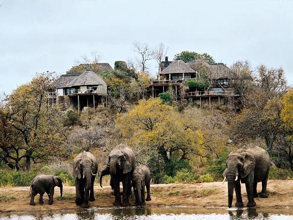 Leopard Hills Private Game Reserve - lodge overlooking waterhole
