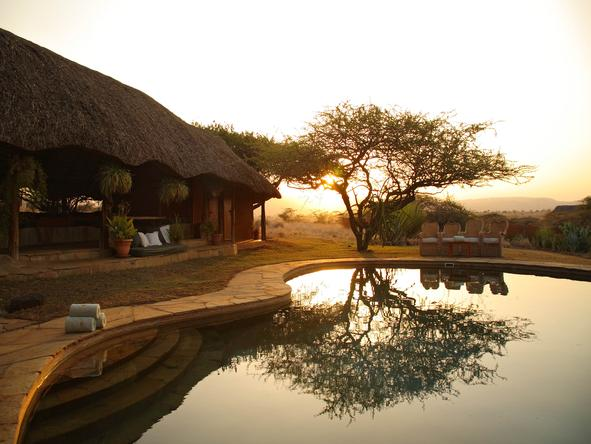 Lewa Safari Camp - Pool View