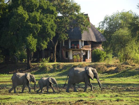 Luangwa Safari House - Landscape