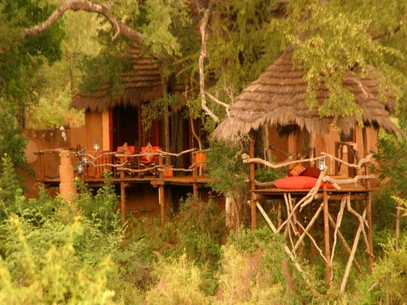 Makalali Private Game Lodge - Accommodation