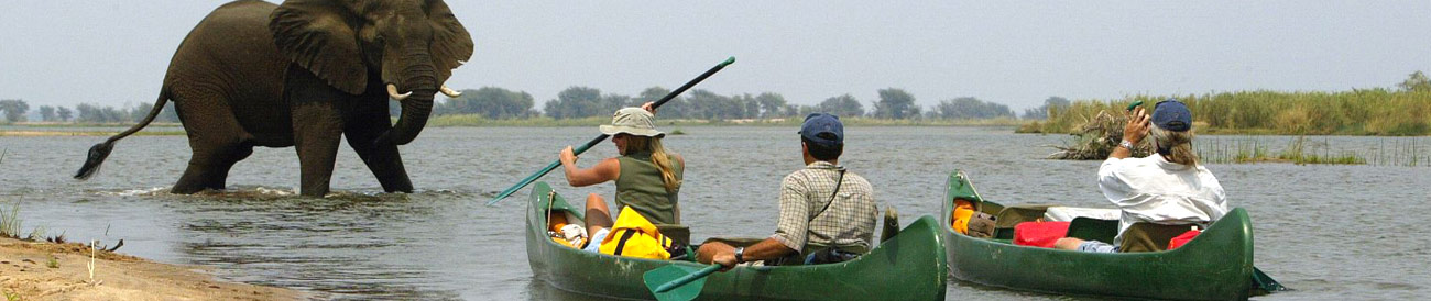 Mana Pools National Park - experience a true taste of wild African with a canoe safari at Mana Pools - it's definitely one for the adventurous!