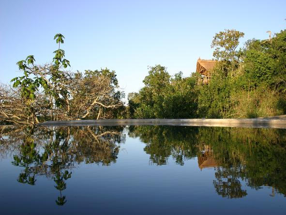 Mihingo Lodge - Pool2