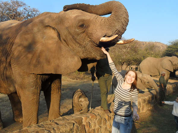 Monique Tolken - meeting elephants in Pilanesberg National Park