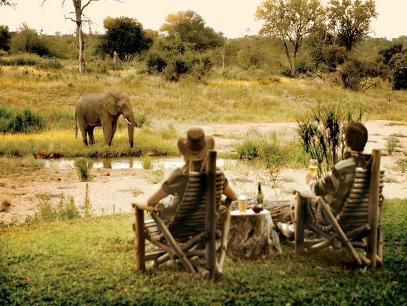 Motswari Game Lodge - Waterhole