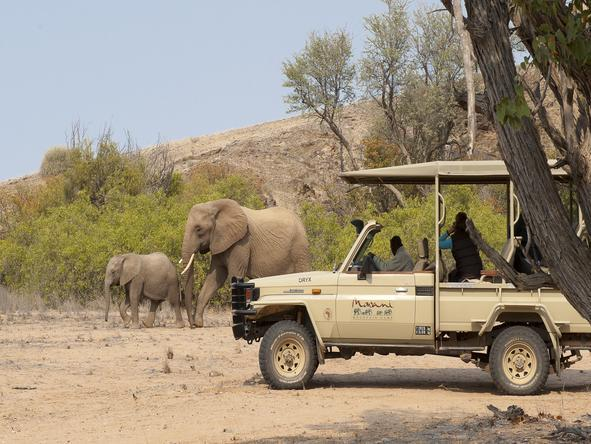 Mowani Mountain Camp - Game Drive
