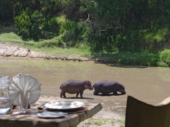 Naibor Luxury Camp - Hippos