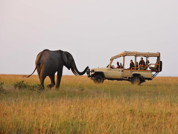 Naibor Wilderness - Game Drive