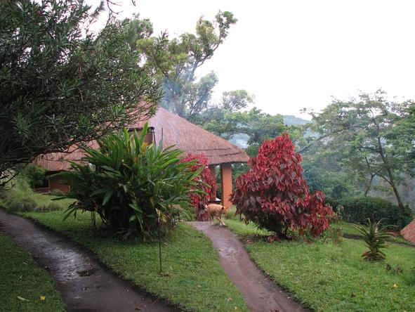 Ndali Lodge - Nature