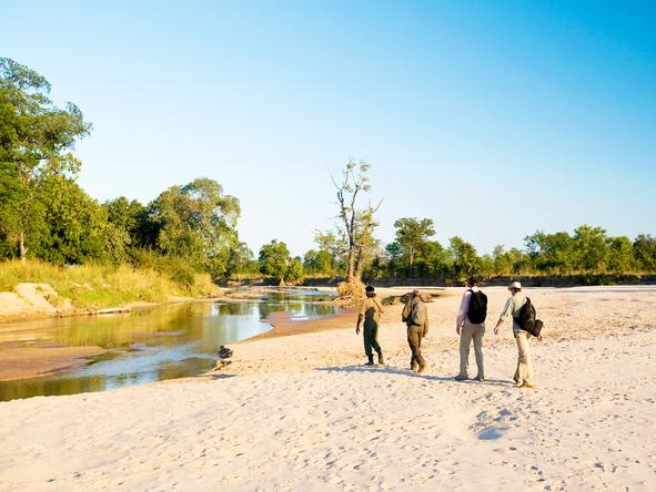 Nsolo Bush Camp - walking safaris