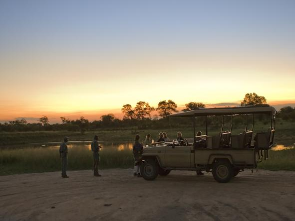 Plains Camp - Game Drive