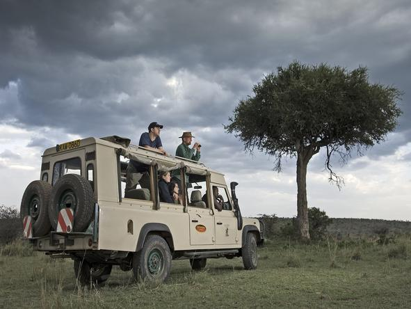 Porini Lion Camp -Game Drive