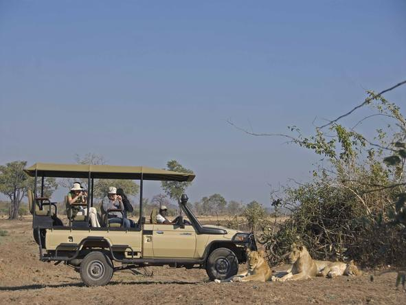 Puku Ridge - game drive with lions