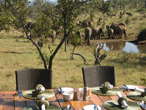 Royal Madikwe - Deck Dining