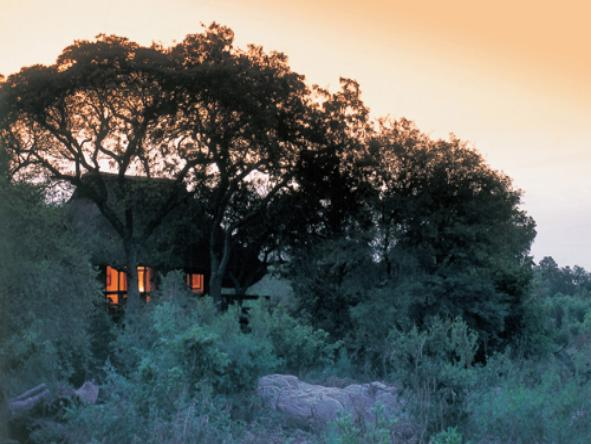 Sabi Sabi - Little Bush Camp - Accommodation