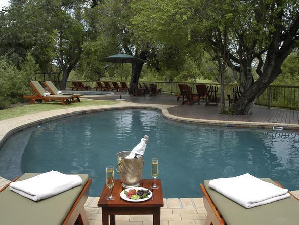 Sabi Sabi Bush Lodge - Pool