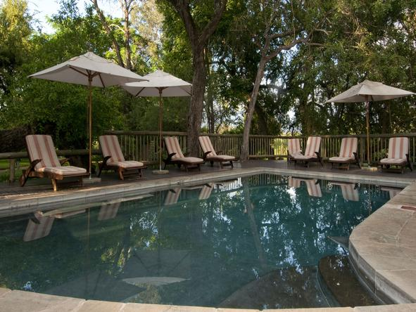 Sabi Sabi Selati Lodge - Pool