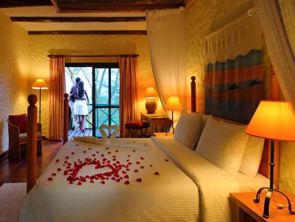 Sarova Lion Hill Game Lodge - Honeymoon