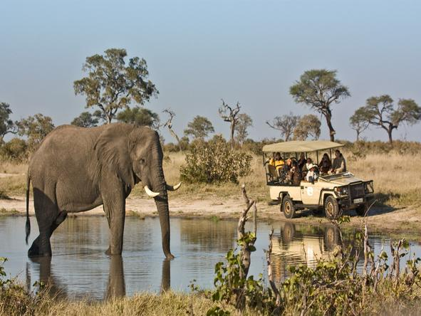 Savute Elephant Camp by Orient Express- Game Drive