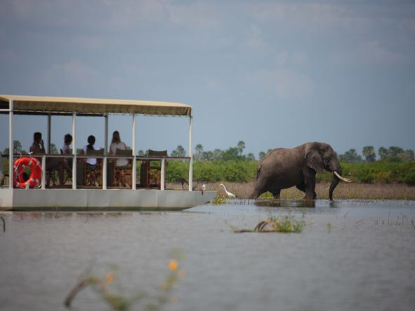Selous Safari Camp - boat trip + elephant