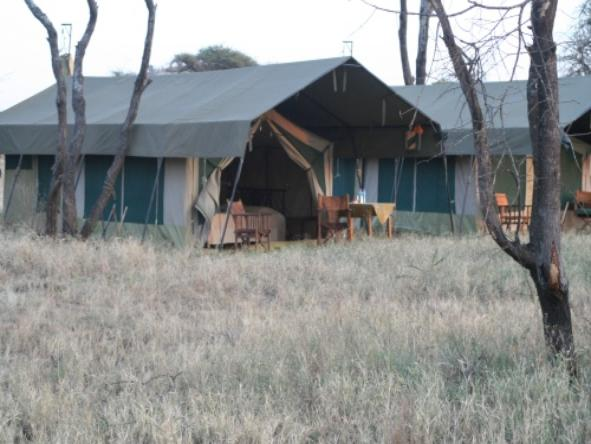 Serengeti Kati Kati Camp - Accommodation