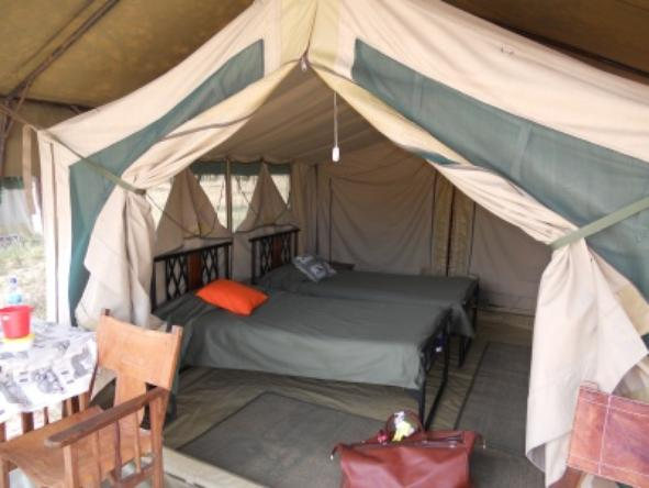 Serengeti Kati Kati Camp - Room