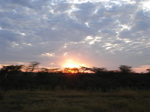 Serengeti Kati Kati Camp - Sunset