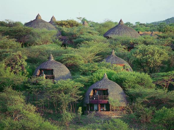 Serengeti Serena Safari Lodge - Lodge
