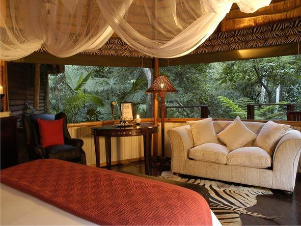 Serenity Forest Eco Reserve - Private Lounge