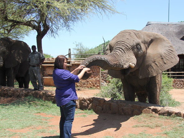 Sharlaine Assur - elephant feeding time in the Pilanesberg!