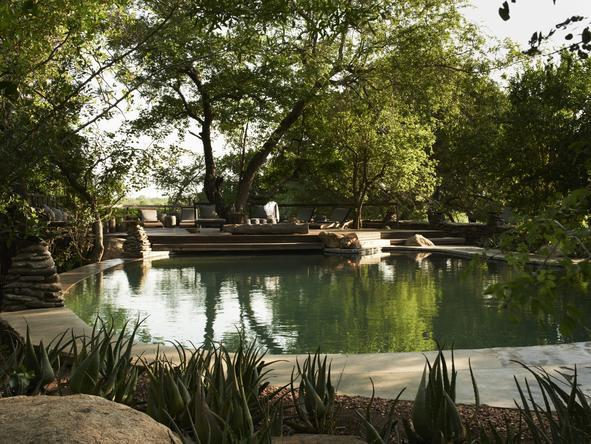 Singita Boulders Lodge - Pool